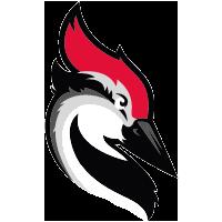 Woodpecker integration | Kotive